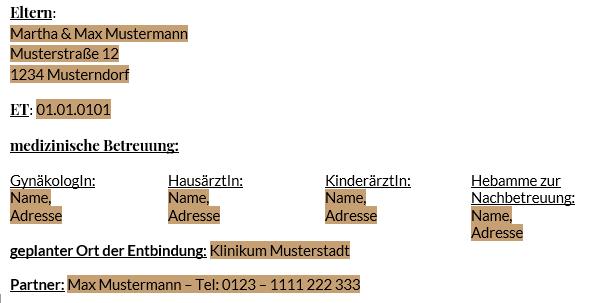 Geburtsplan_Kontaktdaten_Geburtspartner_Arzt_Krankenhaus